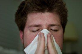 alergia, katar